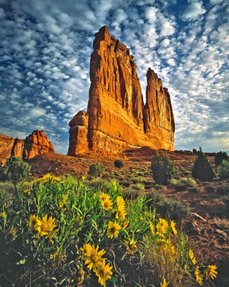 arches national park courthouse towers and mulesears tom till