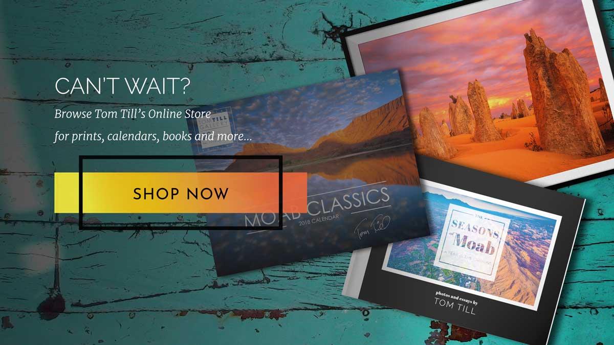 shop tom till online store cta