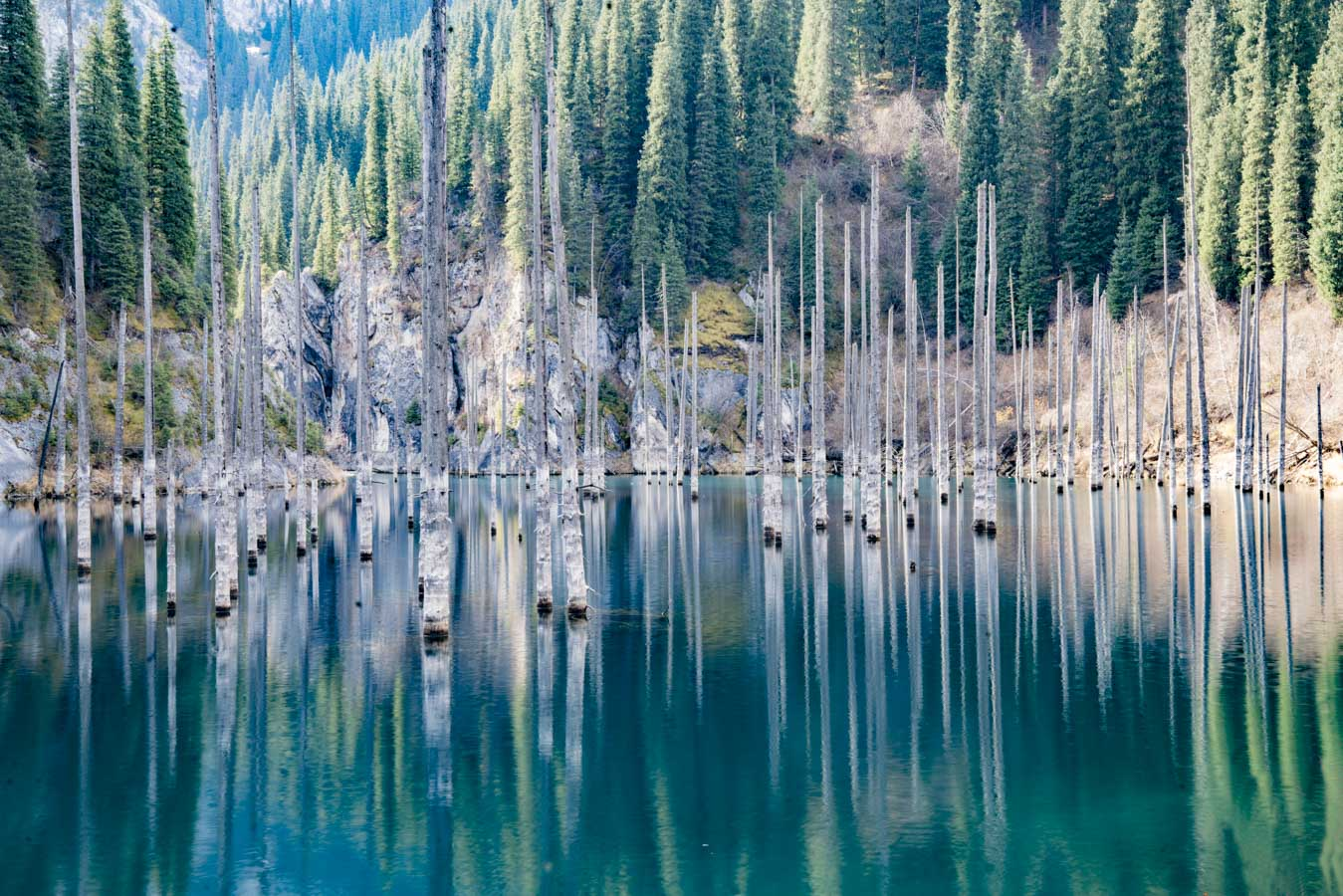 The Sunken Forest, Lake Kaindy, Kazakhstan Photographed by Tom Till