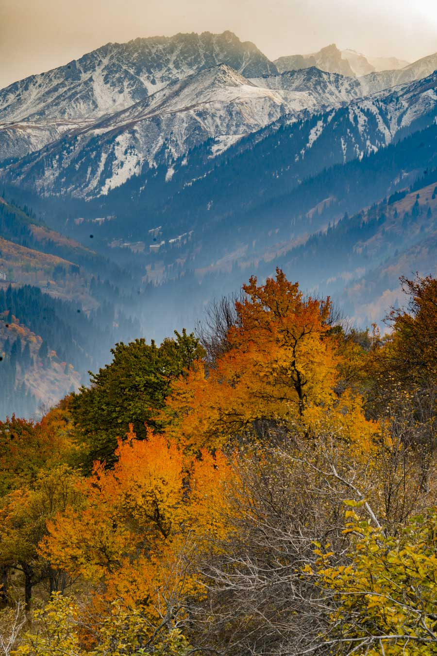 Fall color in Zailiyskiy Alatau Mountains, Photographed by Tom Till