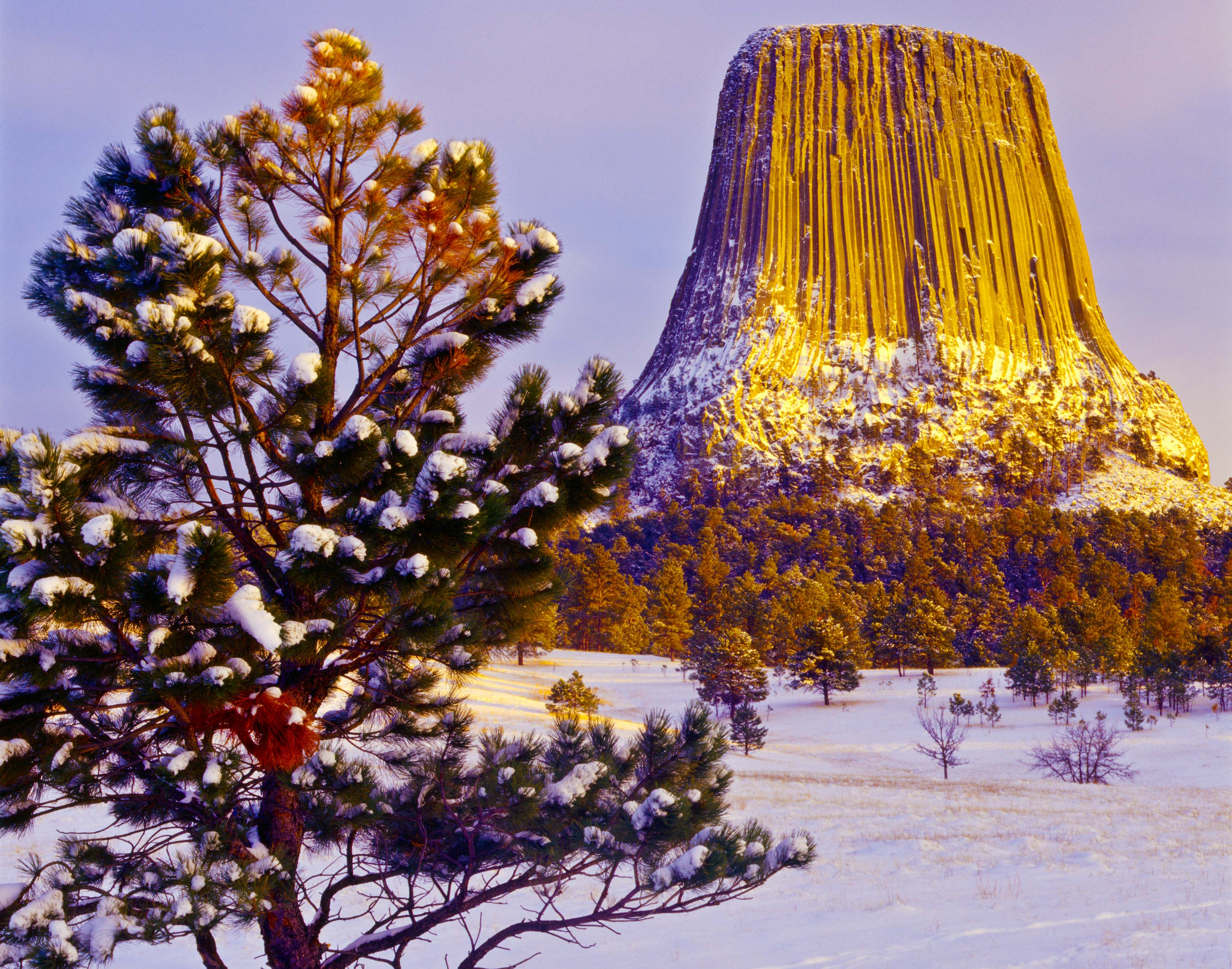Devils Tower at Winter Sunset Photographed by Tom Till