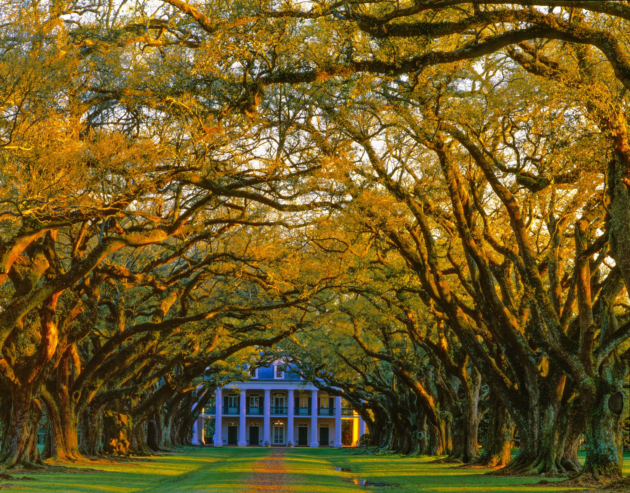 Oak Alley Mansion, Mississippi River, Louisiana, Antebellum Mansion photographed by Tom Till